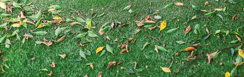 Čištění a péče o umělý trávník