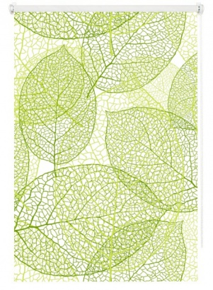 Roleta Leaf 4 Mini 66564 transparentní