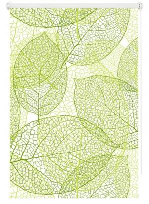 Roleta Leaf 4 Mini 66564 zatemňující
