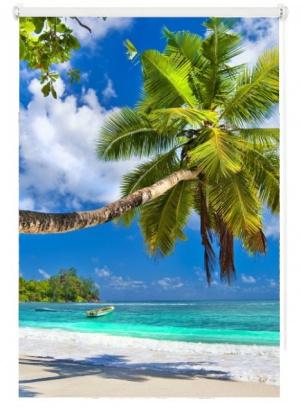 Roleta Karibik Mini 64612447 transparentní