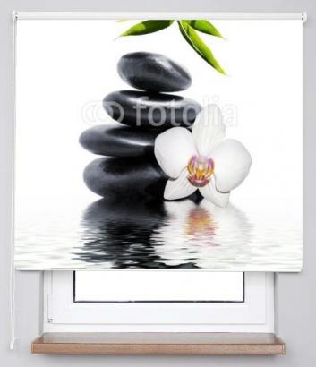 Roleta Orchidej Classic 54884839 transparentní 45